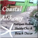 Icon for Coastal l Alchemy